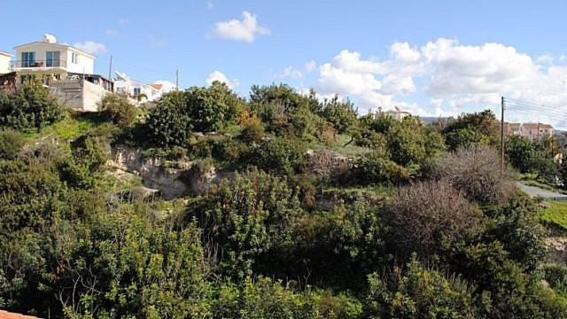 eve5-landscape